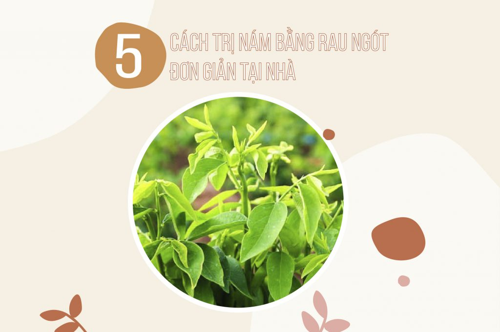 5-cach-tri-nam-bang-rau-ngot-don-gian-tai-nha