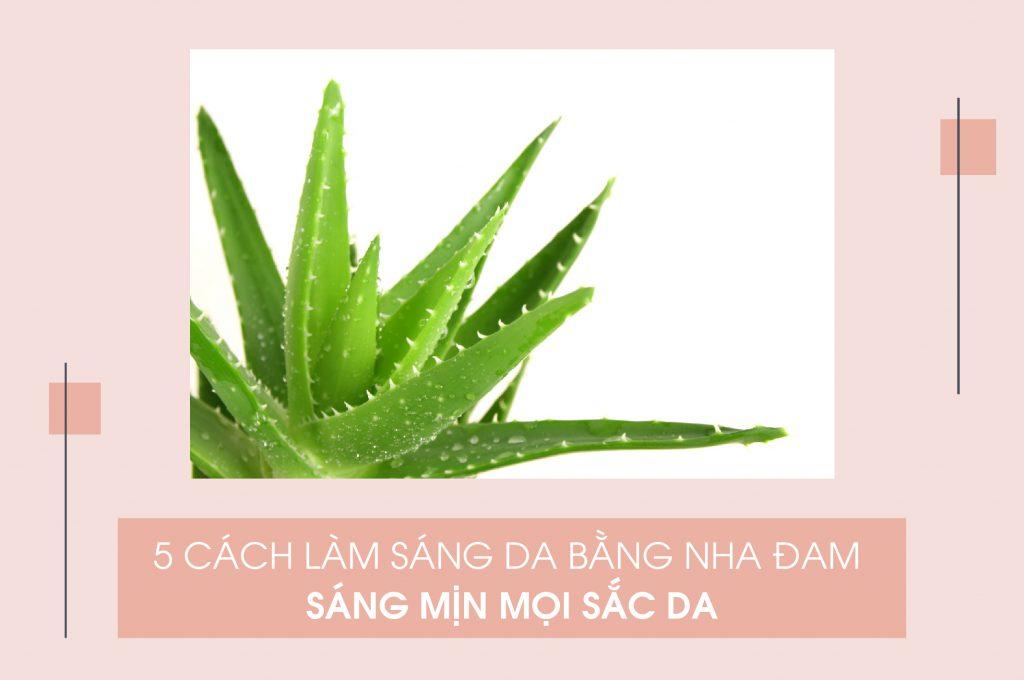 5-cach-lam-sang-da-bang-nha-dam-sang-min-moi-sac-da