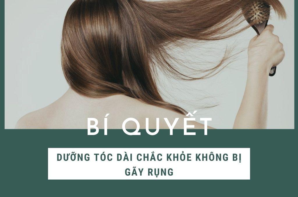 bi-quyet-cham-soc-toc-dai-chac-khoe-khong-bi-gay-rung