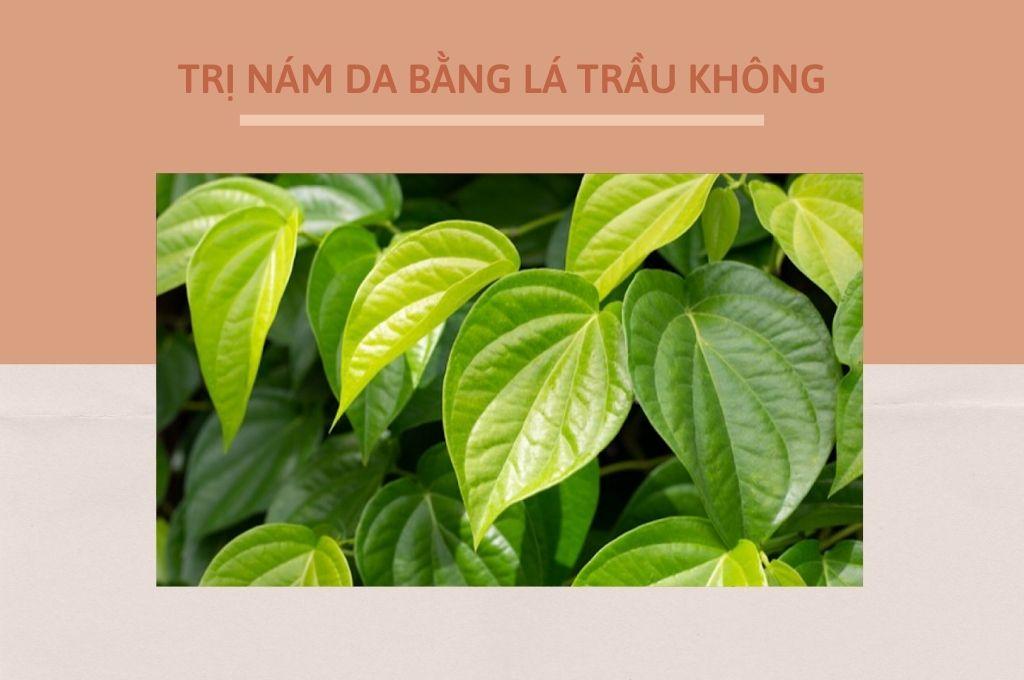 cach-tri-nam-da-bang-la-trau-khong